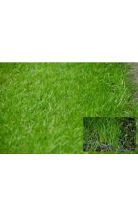 Kratka do trawy - kolor zielony - umocnienie podłoża